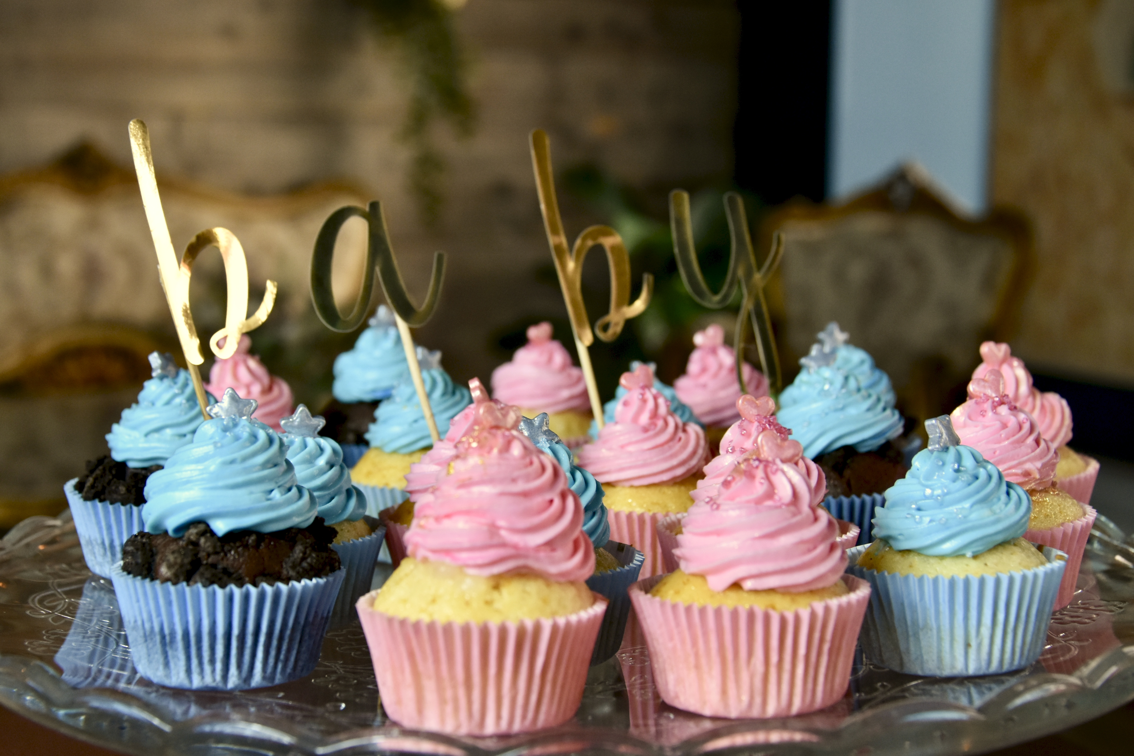 Cupcakes baby jungle Thé patisserie castres